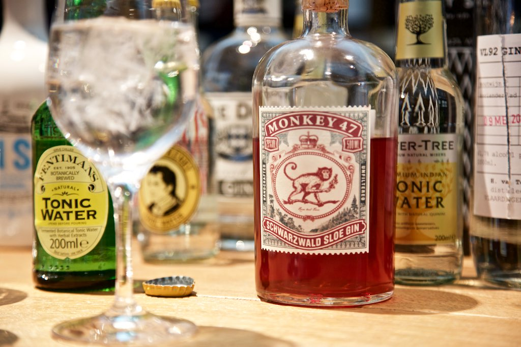 Gin and Tonic mit Monkey 47 Sloe Gin