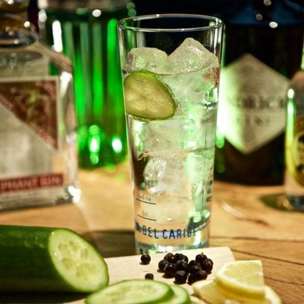 Gutschein Gin Tasting