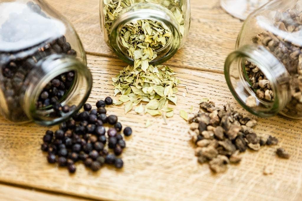 Gin und seine Botanicals